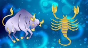 taurus-scorpio