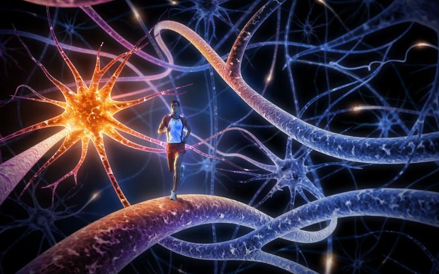 exercitii-pentru-creier