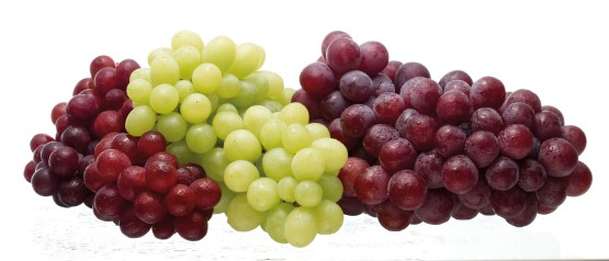 Grapes-06RTCP
