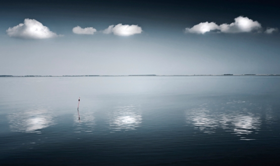 Silence-Claire-Droppert-Photography-7