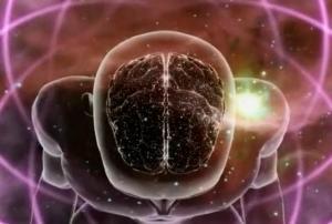 Evolution The Illumination of Consciousness
