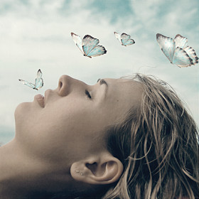Healing-Zone-Mind-Detox-Method