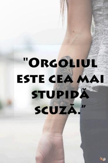 orgoliul_este_cea_mai_stupida_scuza-1