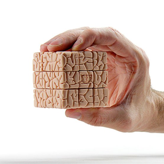 1671_the_brain_cube_inhand