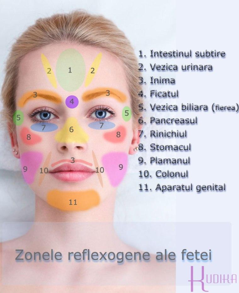 zonele-reflexogene-ale-fetei