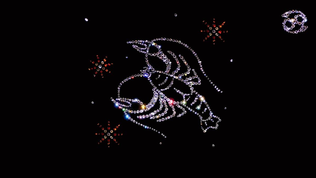 Marele  zodiac al  iubirii-Zodia RACULUI