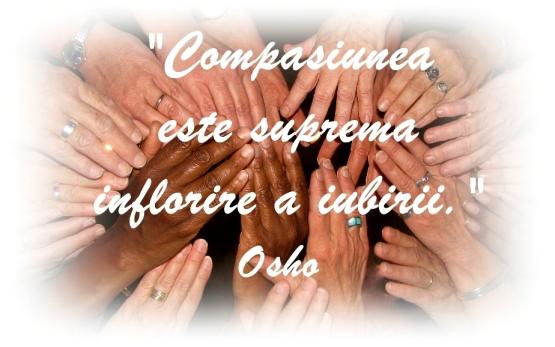 Compasiune (Adina Amironesei)