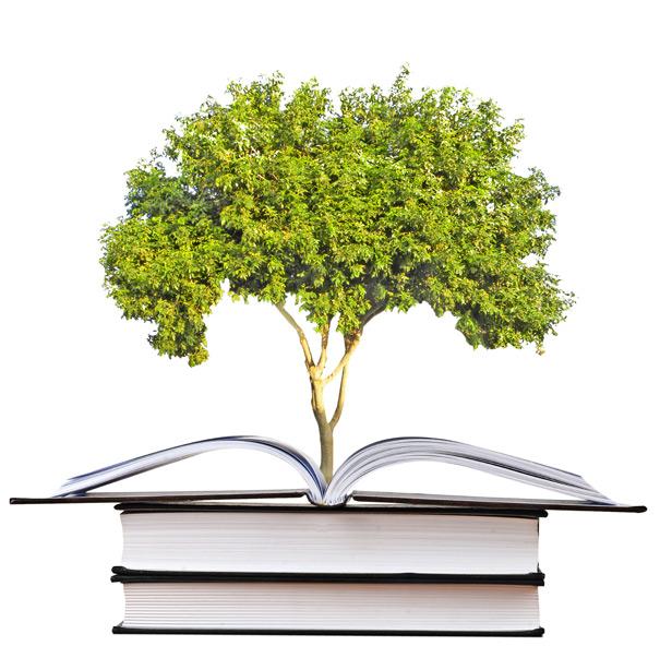 knowledge-tree
