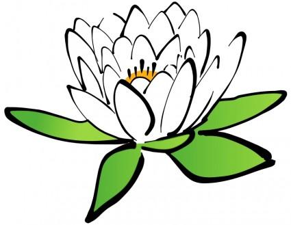 lotus_flower_55237