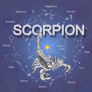SCORPION2-300x300