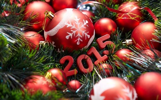 tene_new_year.2015 (1228)