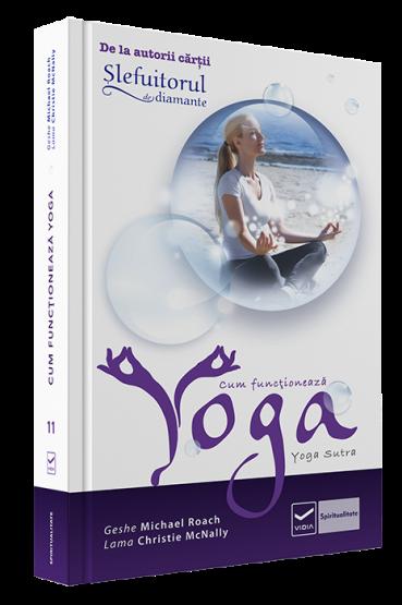 Cf_yoga_3D