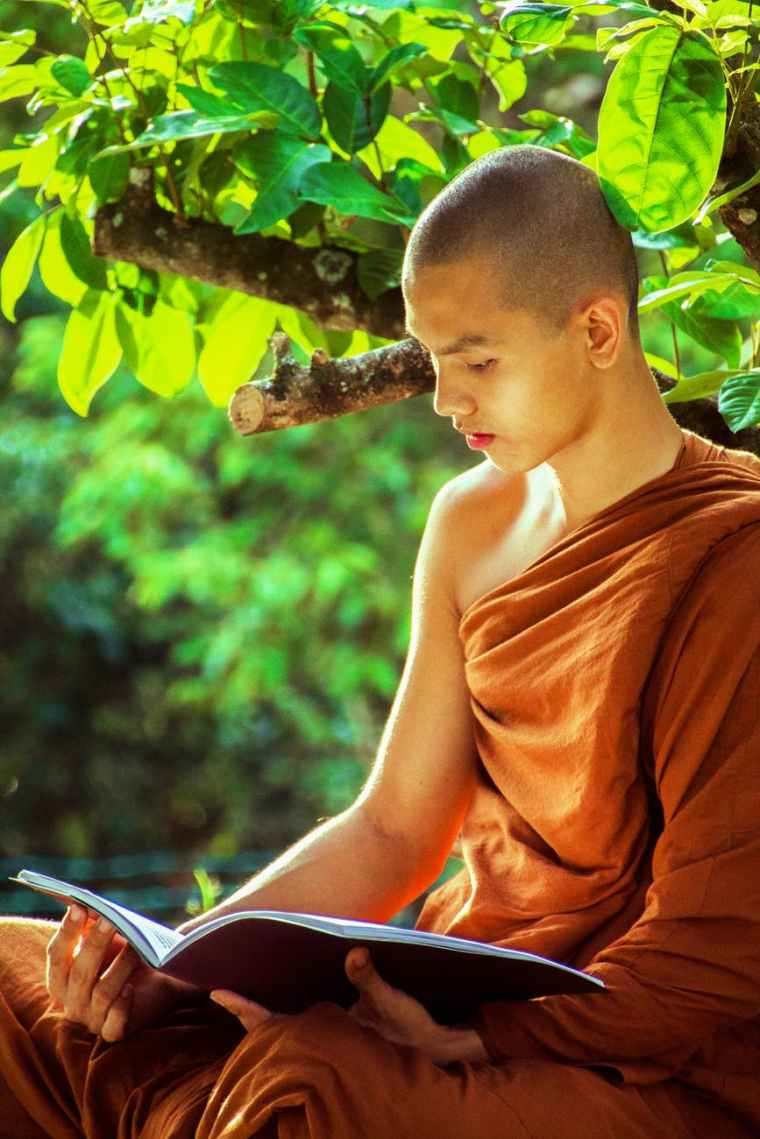 bhikkhu book boy buddhism